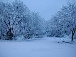 Χιονιάς