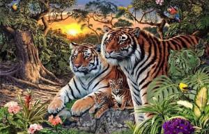 foto-tigres-1